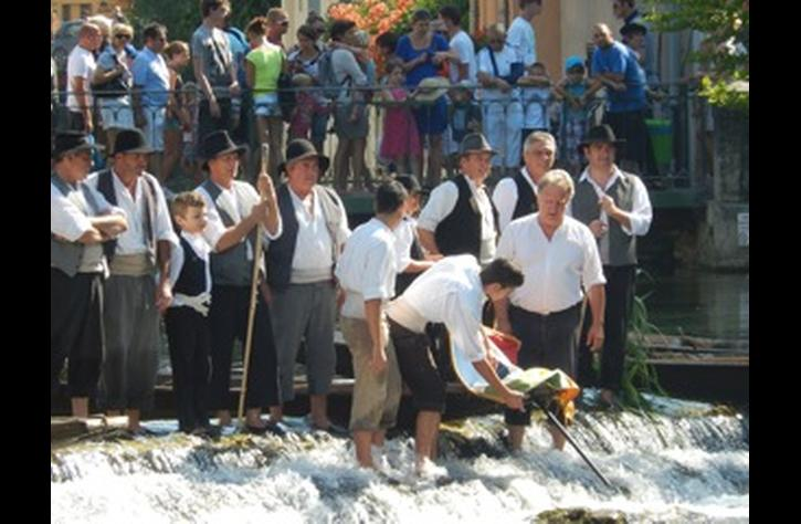 Fete of St. Anton in the Sorgue